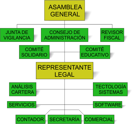 Organigrama Asoarcos Coop